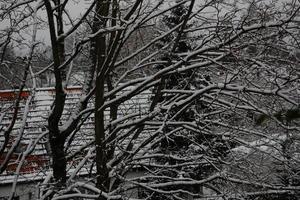 Schneeflöckchen, Weissröckchen...